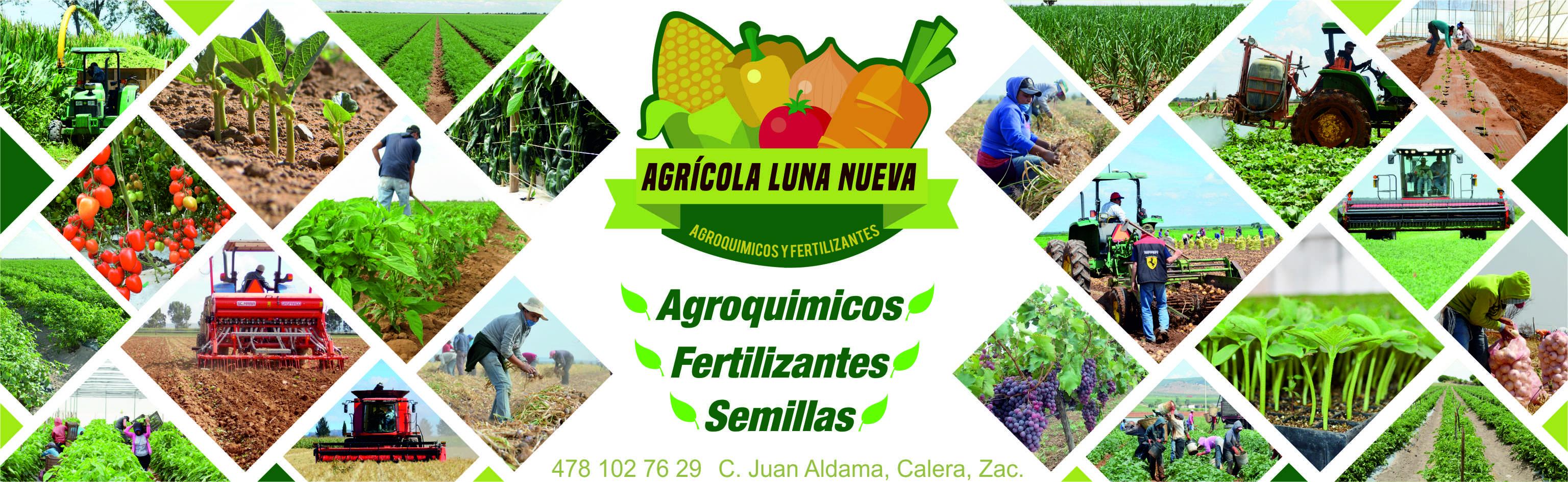 Agricola Luna Nueva