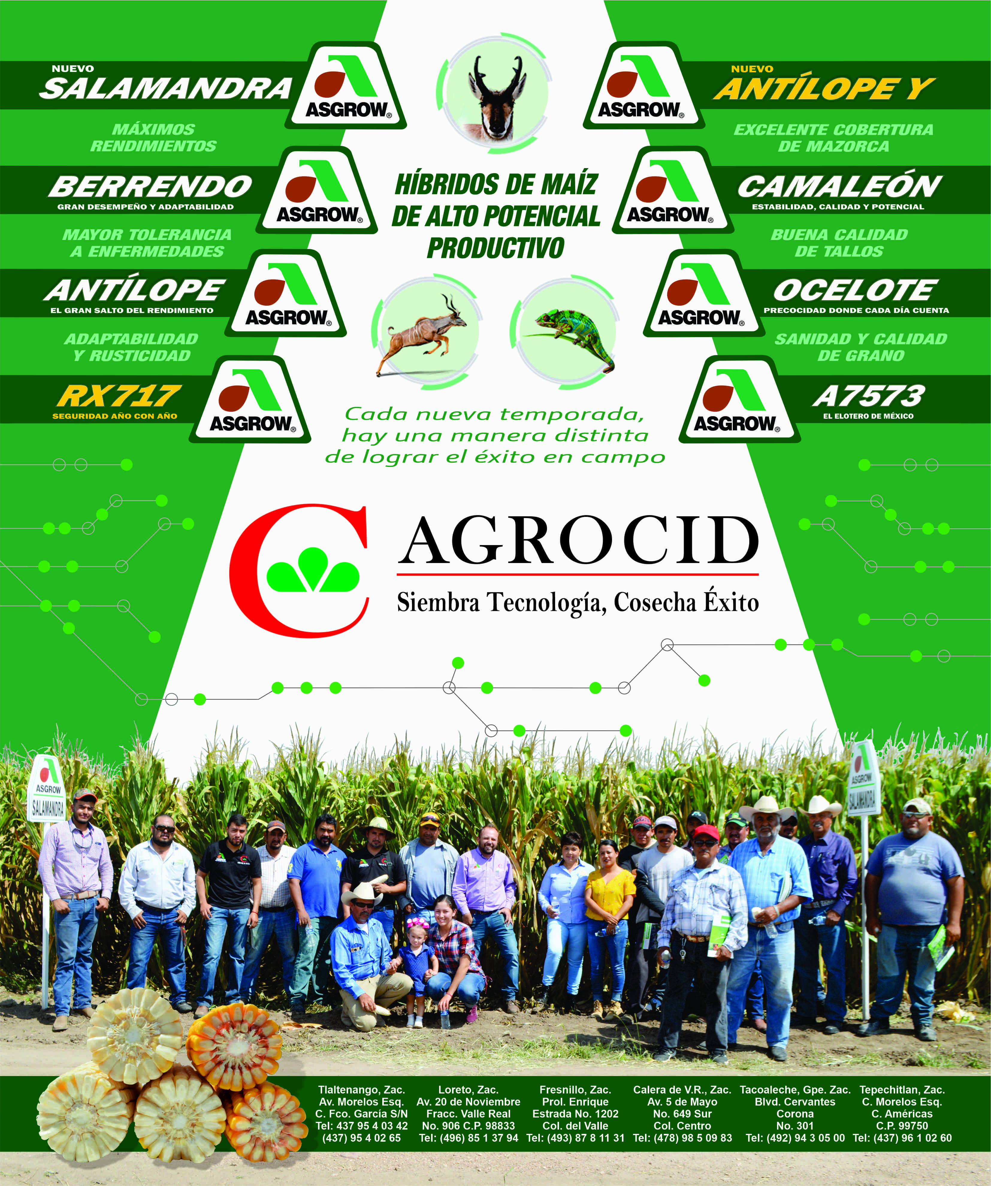 AGROCID